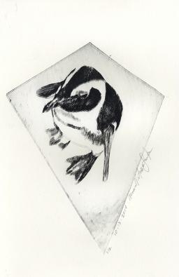 Penguin - Non Toxic Drypoint Print