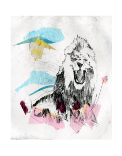 Lion Set 3, Nontoxic Drypoint Print with Chine Colle, 2015